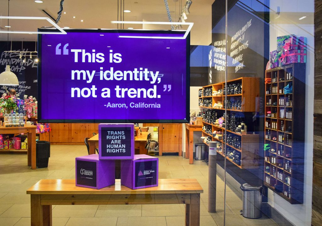 """Image of a Lush Cosmetics store window. In the background of the image there are shelves stacked with products. In the foreground there is a screen that reads """"This is my identity, not a trend. - Aaron, California"""". The text is white on a purple background. Beneath are 3 purple and black cubes stacked in a triangle. The top one reads """"Trans rights are human rights"""". The bottom two show the logos for the National Centre for Transgender Equality and the Canadian Centre for Gender and Sexual Diversity."""